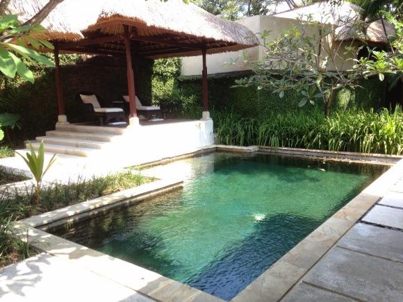 這應該是腳部按摩進行的地方吧。前方是泳池,不是水池。按太爽直接跳下去是可行的(大心)
